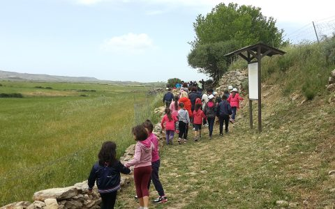 Visit to the sacred well of Coni