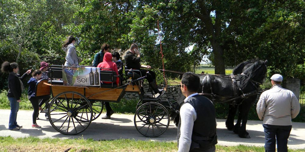 Archaeological tour in a wagon